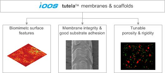tutela membranes and scaffolds to fabricate covered medical devices